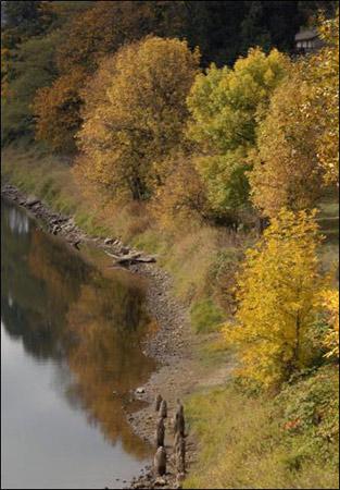 Autumn Collection - River's Edge