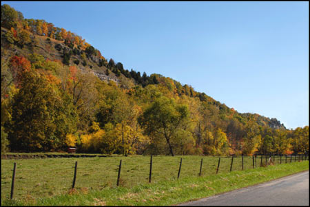 Autumn Color Collection - Fence Line