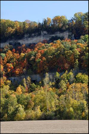 Autumn Color Collection - Autumn Color