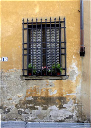 Florence Collection - Window Box
