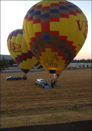 Hot Air Balloon Collection - Hold On