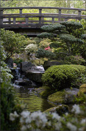 Japanese Garden Collection - Bridge the Gap