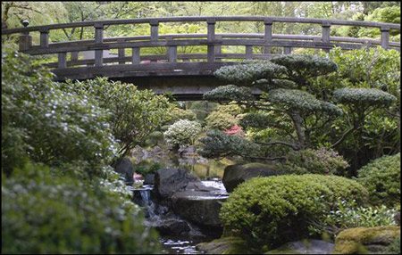 Japanese Garden Collection - Relax