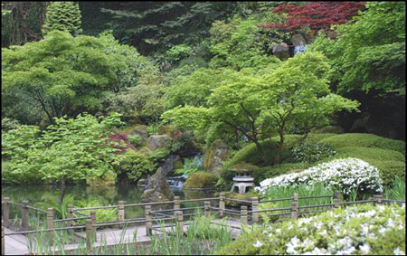 Japanese Garden Collection - Journey