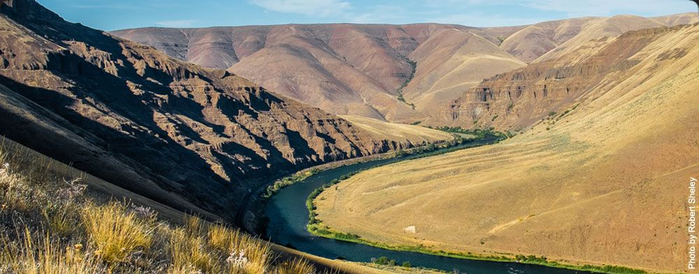 The Deschutes River is 252 miles long and encompasses 10,500 square miles.