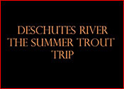see the video of our Deschutes River Summer Trout Fishing
